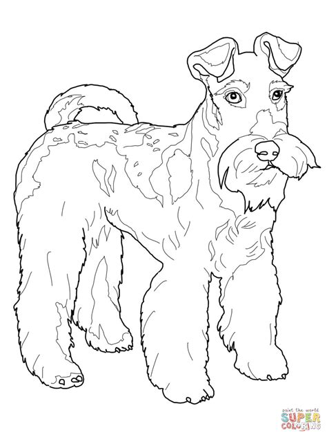 Cute Boston Terrier Coloring Pages Coloring Pages Terrier Coloring Pages