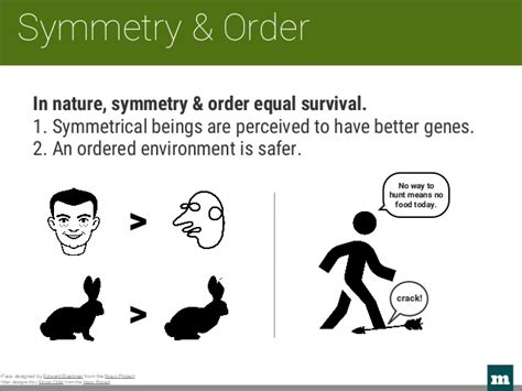 symmetry the ordering principle 1904263518 from guesswork to gestalt designing for the brain
