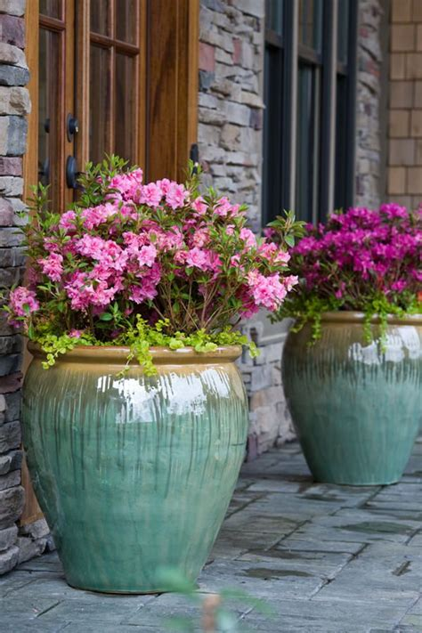 Large Patio Pots by Best 25 Large Outdoor Planters Ideas On Big