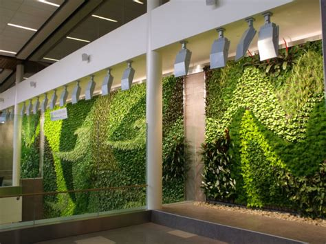 Living Wall Canada Edmonton Airport Unveils Air Cleaning Living Green