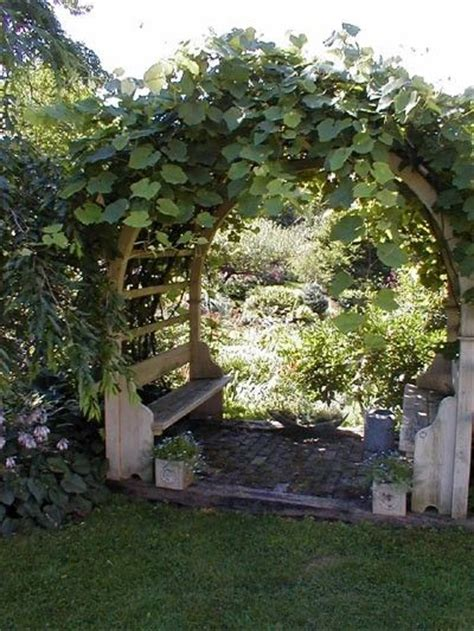 Garden Arch For Grapes 25 Unique Grape Arbor Ideas On Pergola Garden