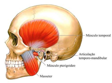 bruxismo mal di testa bruxismo ou ranger os dentes sintomas causas tratamento