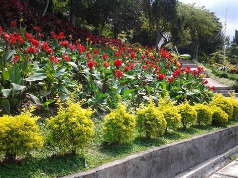 wallpaper bunga di taman berasa taman surga di taman bunga selecta sellaajani s blog