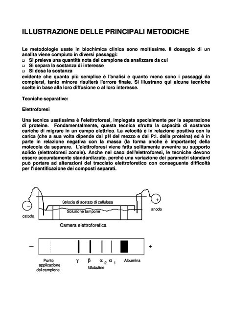 biochimica clinica dispense biochimica clinica metodiche principali dispense