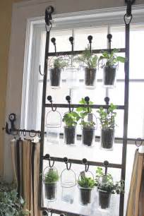 Window Herb Garden indoor herb garden gardening pinterest