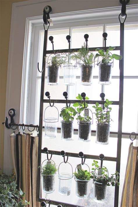 Hanging Window Herb Garden | indoor herb garden gardening pinterest
