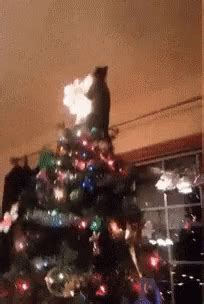 christmas fail gifs tenor