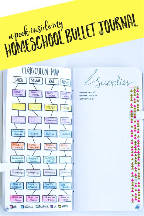 my collectiom for you a few ideas about popular flowers my homeschool bullet journal setup