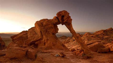 las imagenes oniricas un mundo en paz fen 243 menos naturales que crean esculturas