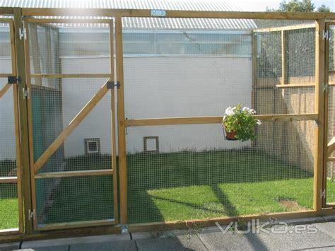 imagenes de jardines con gatos foto jardin para gatos