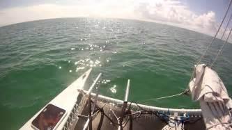 catamaran echo catamaran echo dolphin tour key west florida youtube