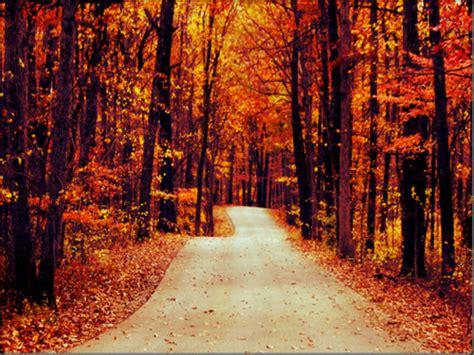 autumn autumn wallpaper 32300231 fanpop