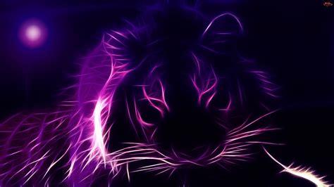 Kaos 3d Tiger Neon colorfull animal 3d hd 24 46440 cool wallpapers hd hd image cool 3d
