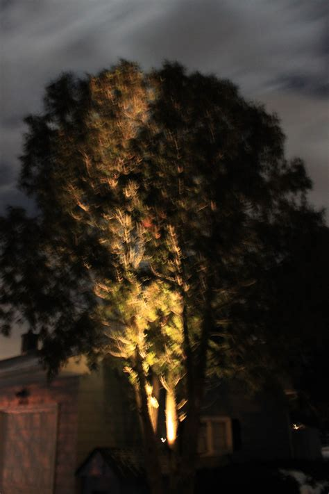 Halogen Landscape Lighting Allscape Outdoor Lighting System Design Halogen Vs Led
