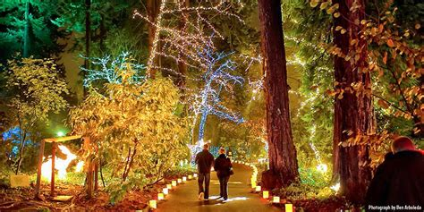 the grotto festival of 10 best christmas light displays in portland 2016