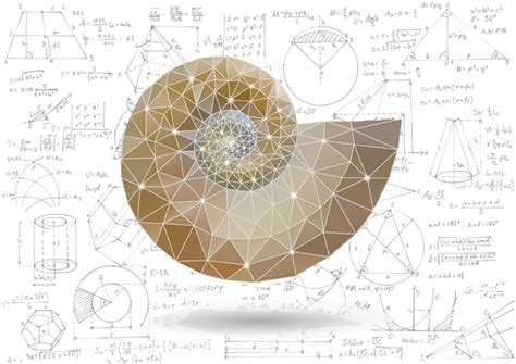 mathematical pattern the theory of everything math inspired works of art discovermagazine com