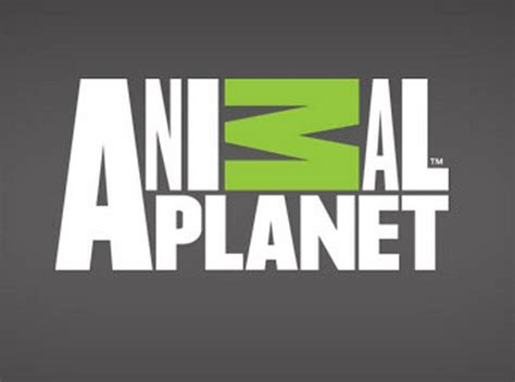 animal planter animal planet tv logo bwwtvworld com