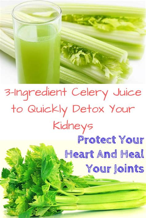 Can Kidney Detox Prevent Cancer by 1000 Images About Health On Blood Sugar Aloe
