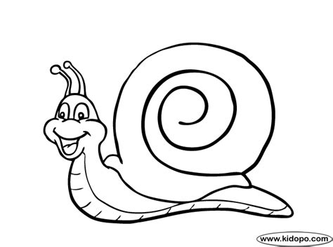 snail coloring page snail coloring page