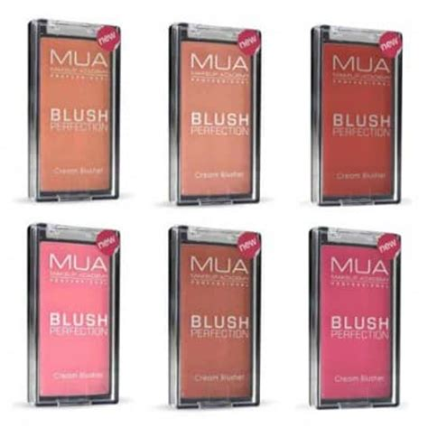 7 Best Blushes Expert Reviews by 10 Best Blushes Available In India Reviews Price List