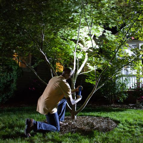 landscape spot light install landscape lighting