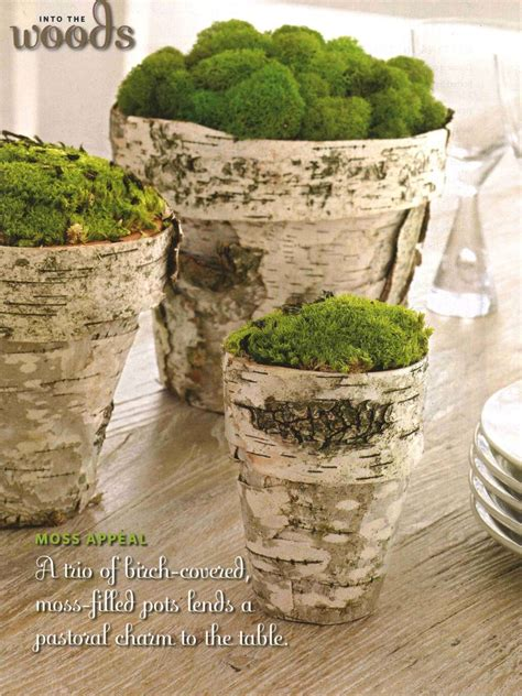 fifteen birch crafts for home decor rustic crafts amp chic