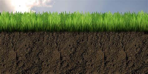 Soil Cross Section by Dirt Cross Section Images Frompo 1