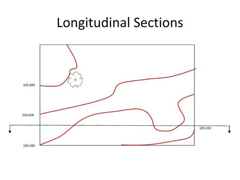 longitudinal section ppt drawing longitudinal cross sections powerpoint
