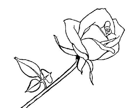 imagenes para dibujar una rosa imagenes de la rosa de guadalupe en dibujo imagui