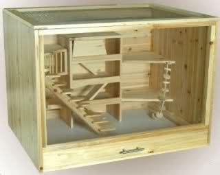 gabbie per criceti fai da te come si costruisce un terrario fai da te sezione