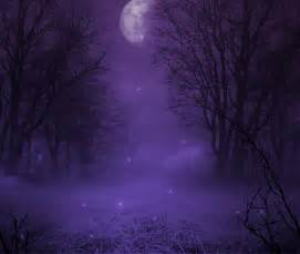 moonlight color twinkling snow in the moonlight color me lavender