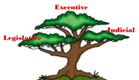 Which Document Divided The Government Into Branches