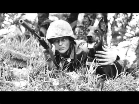 war dogs trailer war dogs of the pacific trailer