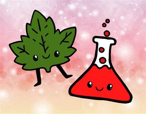 dibujos para pintar juegos de ciencias naturales dibujo de la ciencia pintado por en dibujos net el d 237 a 07