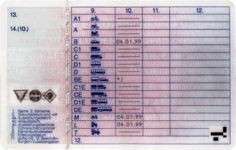 körbchengröße tabelle driver s license