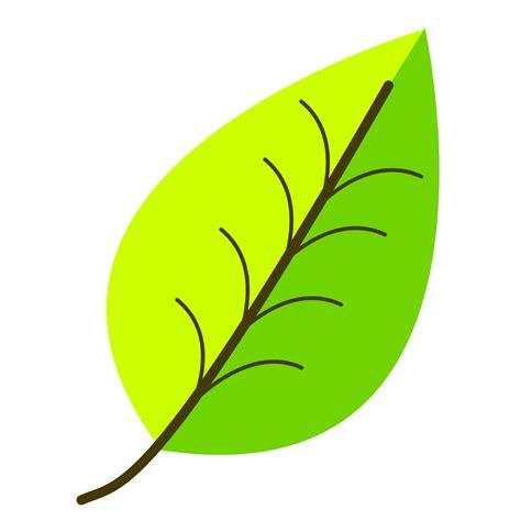 leaf clipart leaves clip images clipartfest