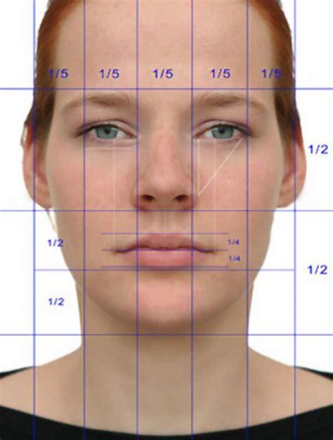 face ups on pinterest 36 pins ideal facial symmetry my asymmetry pinterest