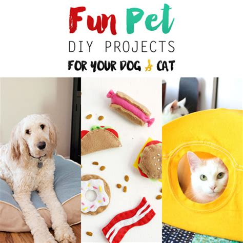 diy crafts for dogs pet diy projects for your and cat the cottage market