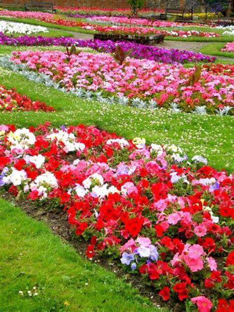 types  garden flowersjpg  comment  res p hd