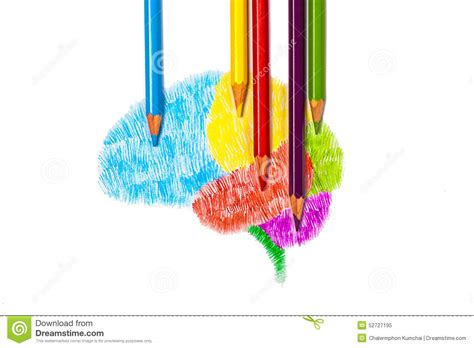 sketchbook how to colors sketch drawing of brain graphic by color pencil stock