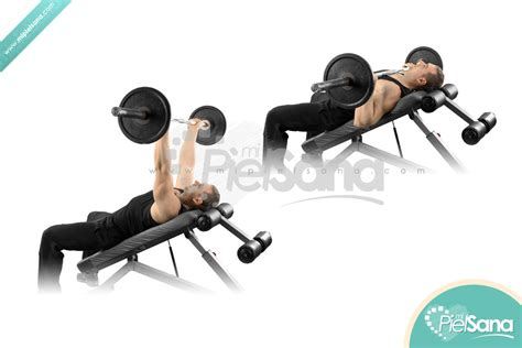 reverse incline bench press reverse grip incline bench press