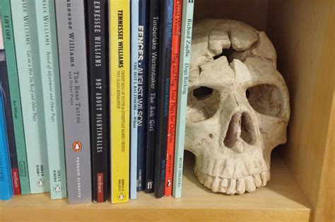 Skull Shelf by Drama School Applicants Coach