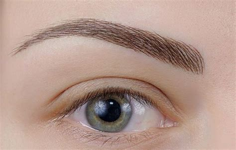 eyebrows tattoo hair by hair hair stroke permanent eyebrow search makeup