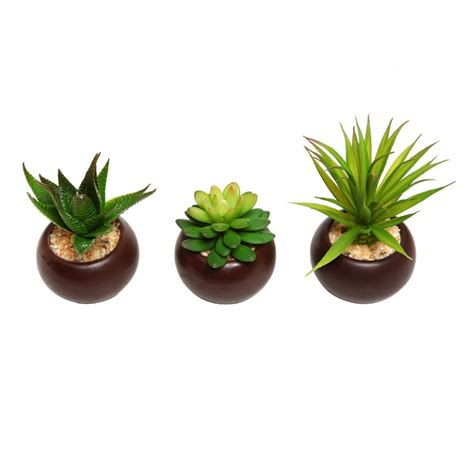 new potted artificial mini succulent plants set of 3 dark brown ceramic pots ebay