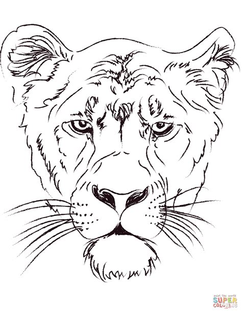 coloring page lion face adult coloring pages lion head coloring page of lion head