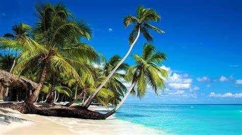 hängematte natur die 60 besten meer und strand hintergrundbilder