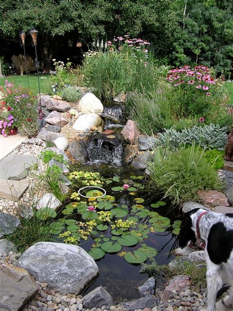 25 backyard pond designs outdoor designs design