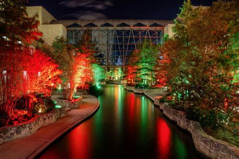 christmas trees for sale in san antonio tx 5 must see light displays