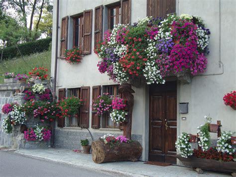 immagini di balconi fioriti un piccolo giardino in citt 224 balconi fioriti