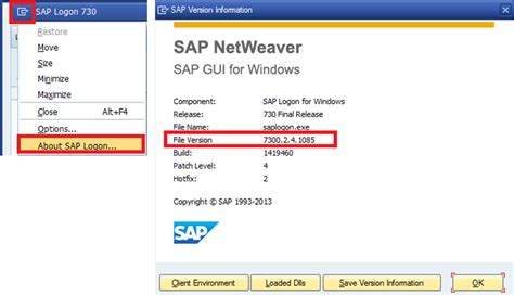 tutorial sap versi 14 sap gui version check how to find the version of sap gui